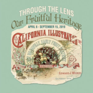 californai illustrated book
